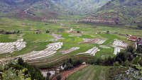 5-day trip on motorbike in Vietnam on the Hoang Lien range