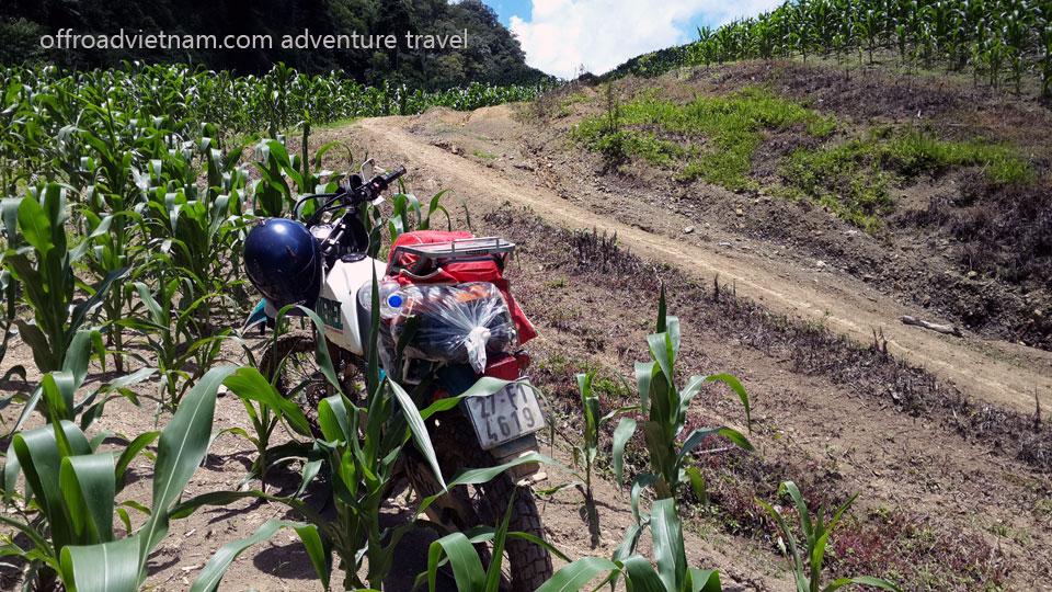 Vietnam Motorcycle Motorbike Tours - 2-Day Motorbike Tour: Vietnam Motorcycle & Motorbike Tours to Mai Chau, Thung Mai, Thung Nhuoi, Hoa Binh