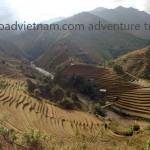 Terrace rice fileds on one of our Vietnam motorbike tours